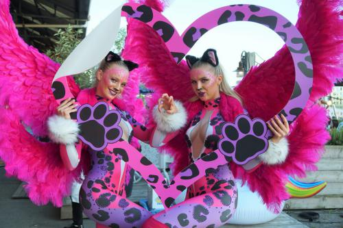 Kitty Kat, Foto Act, Led-Fotoframe, catsuit, Catsuit dancers, custom Led-Frame, Event Entertainment, Festival Performance