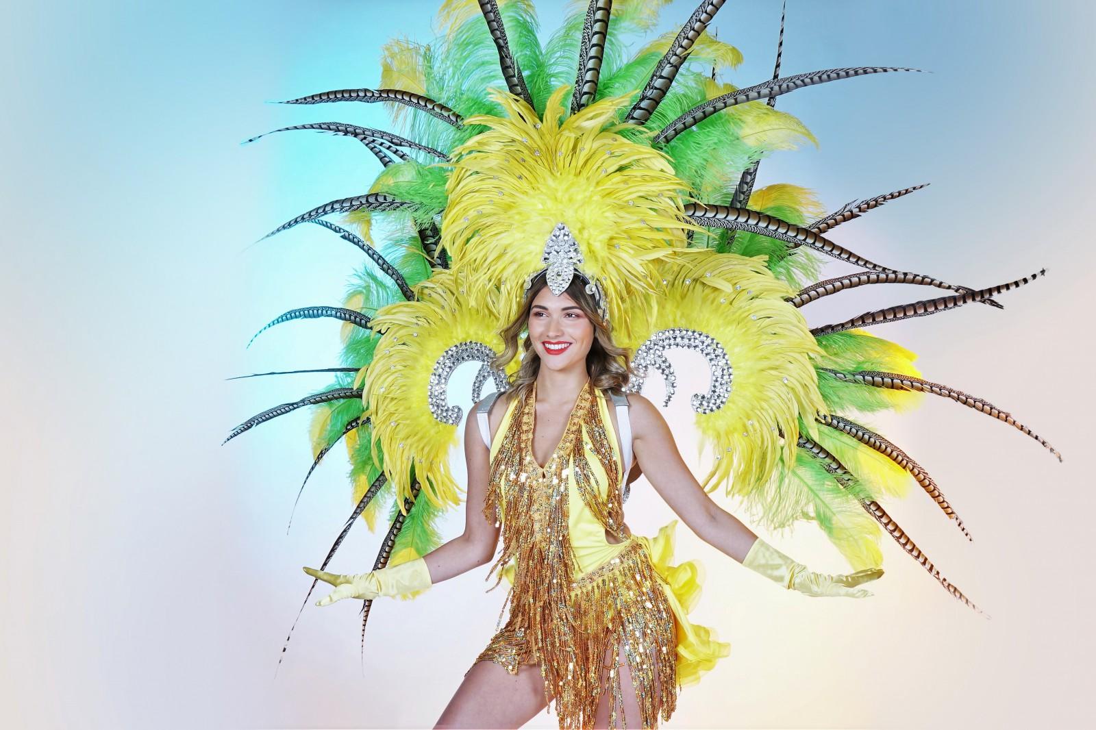 Zomer canaval, Rio de Janeiro entropische Samba danseres, zomer, carnival, salsa, veren dansshow