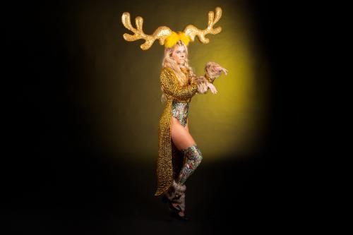Rendier, Kerst entertainment, Winter wonderland, event show, event entertainment, rendier met arreslee, foto act, event fotografie, unieke animatie, welkomstact, uniek kostuum creatie, winter, kerstdagen, stelten act