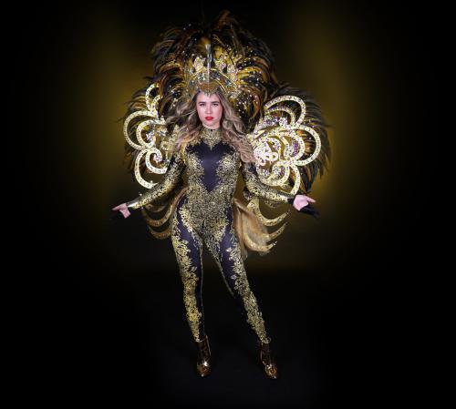 Gouden kostuum, kostuum, thema kostuum, thema entertaintment, gouden thema, mobiel entertainment