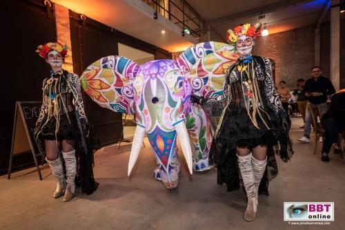 Circus thema, Mega olifant, Circus decor, Thema event, Themafeest, Circus event, Circus thema, Event decor, Thema decor