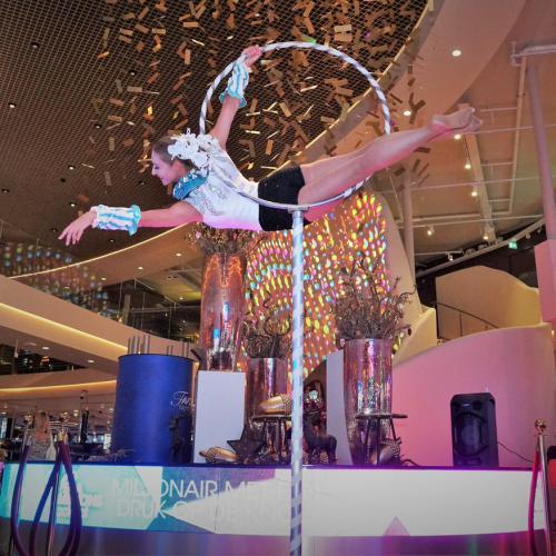 Hoepel act, hoop act, hoop aerial, dans act, staande hoepel, aerialist, thema event, thema kostuum, event