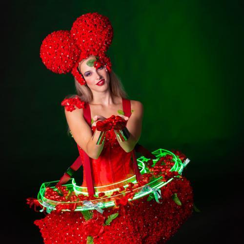 Hartendame, Rozendame, valentijn, valentijndame, liefde thema, rozen thema, entertainment outfit, theater kostuum, festival outfit, chocolade harten, cupcake dame, chocolade dame