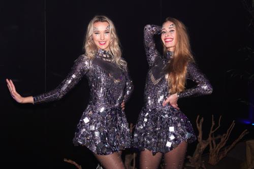 Disco Danseressen op Lentefeest Gala Event. Spiegelpak, Freestyle danseres, DJ danseres, Entertainment, Dansshow, Disco stijl.