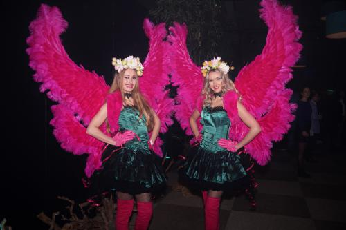 Zomer danseressen in het Pink lelie kostuum met grote roze veren vleugels. Fantasy, Lelie, Pink Lelie, Bloemenmeisje, Flower Girl, Themadame, Hostess, Entertainment, Pink Beauty, Love.