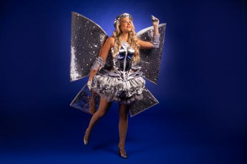 Complimenten dame, cadeau, kado, zilver, strik dame, kerst, silver event, kostuum