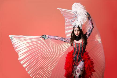 Burleske Circus dame, Burlesque, Showgirl, Circus danseres, Moulin Rouge thema events, Barok, Masquerade Fantasy