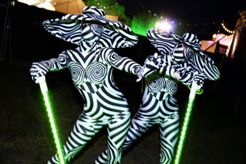 Abstracte artistieke danseressen, Futuristisch, animal, Zebra, Zoo, Avant Garde, Black and White events, dansshow, Festival entertainment, Illusie, 1001nacht