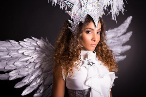Silver Party, Kerst Entertainment, Winterfee, Openingsact, Promotiedames, Danseressen, Christmas Dancer, Themadames, Silver And White, Star, Christmas Angel, Wings.