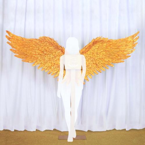 liefde, love, angel, angel wings, wings, angelwings, engel, engelen, engelen vleugels, engelenvleugels, vleugels, victoria's secret, lucifer, foto, fotobooth, photo, photobooth, picture, pictures, picture time, instagood, insta picture