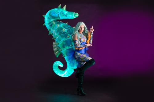 zeepaardkostuum, zeethema, ocean events, zomer festival, summerevents, mermaid, zeemeermin