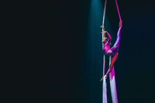 Dansshow, acrobatische danseressen, openingsact, dansact