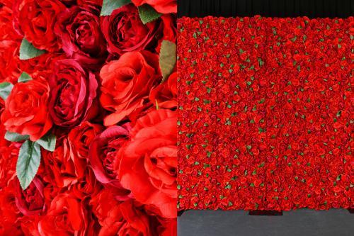 flowerwall, bloemenwand, rozenwand, rose wall, wall of roses, event wall, backdrop, flower bakcdrop, floral backdrop, instagram, instagram backdrop, instagramable, instagood, bloemen, rood, rode rozen, rozen, liefde, valentijn, vaderdag, moederdag, love,