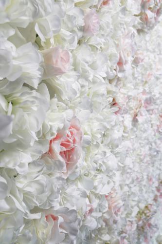 Bloemenmuur, Concept walls, Bruiloft deco, Wedding deco, Wedding walls, Bloemenwand, Flowerwall , Floral backdrop, Bloemen backdrop, Wedding backdrop, BabyshowerBridal shower, Bridal shower decor, Insta backdrop, Insta background, Rozenwand, Babyshower