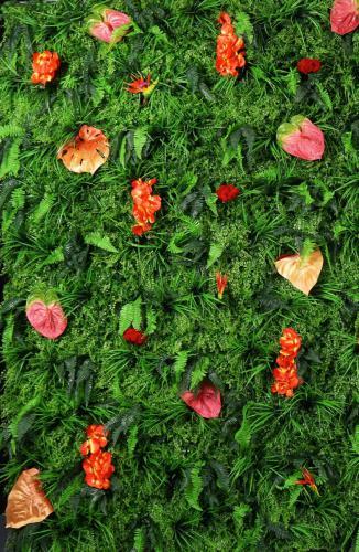 Nature, Wall, Nature Wall, Green, Green Wall, Tropical, Tropical Wall, Jungle, Havana, Cuba, Organic, Ecologic,  Clean, Fotowall, decor, decoratie huren, event styling, evenementen aankleding, Concept walls, Insta backdrop, Insta background, Instagramable